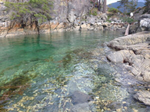 Clear water of Desolation Sound