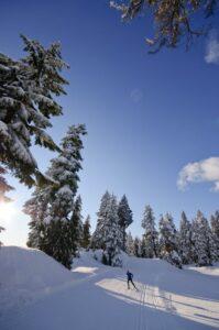 Cypress Nordic Ski