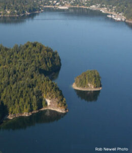 Jug Island, Deep Cove